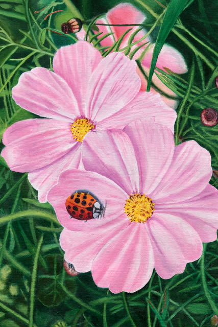Cosmos and Beetle