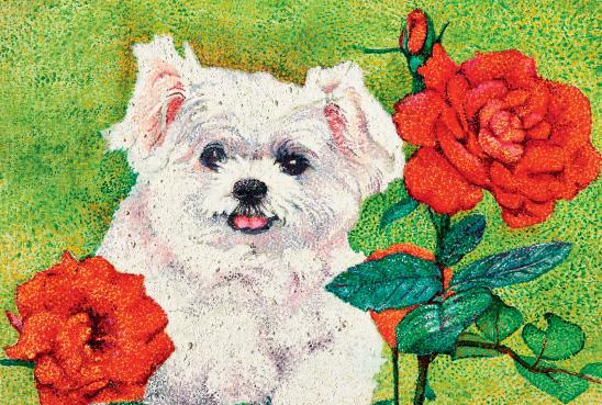 Pretty dog with flowers